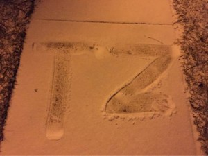 TZ in snow
